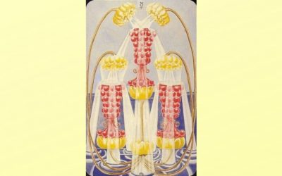 Three of Cups – Abundance