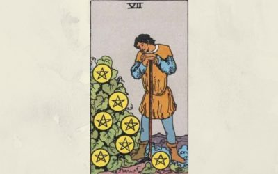 7 of Pentacles – Rider-Waite