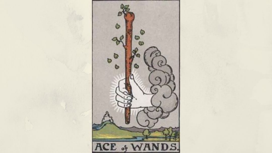 Ace of Wands – Rider-Waite